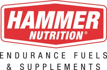 Hammer logo chevron_fs