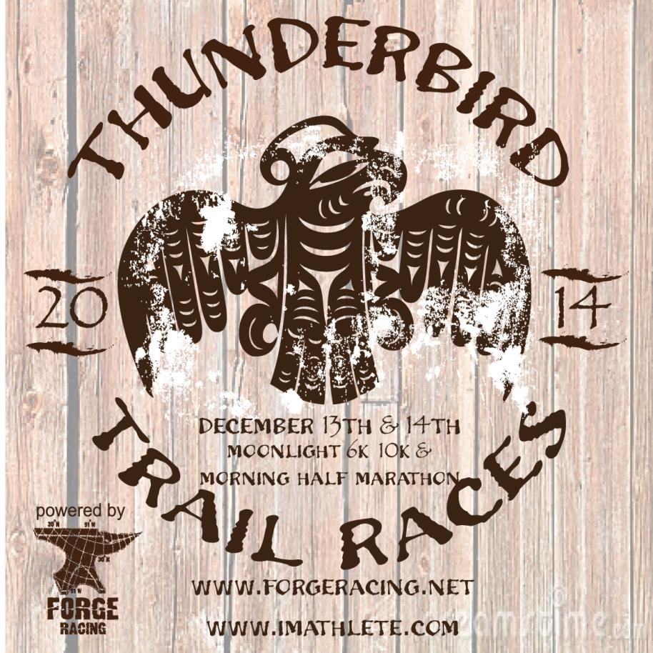 2014 THUNDERBIRD Races Postcard Front
