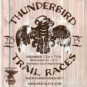 2015 THUNDERBIRD Races Postcard Front